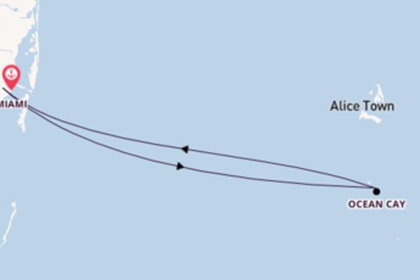 A bordo do MSC Divina em um cruzeiro de 6 dias