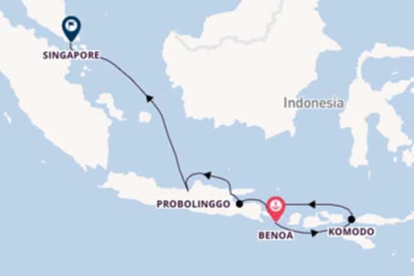 Ervaar het waanzinnige Celukan Bawang, Bali in 11 dagen