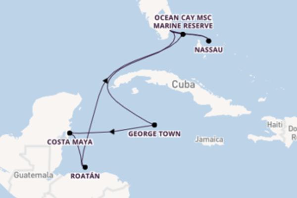 11-daagse reis naar Miami