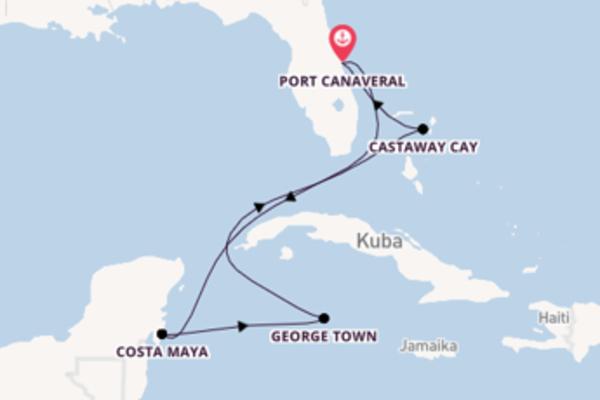 In 7 Tagen nach Port Canaveral über Costa Maya