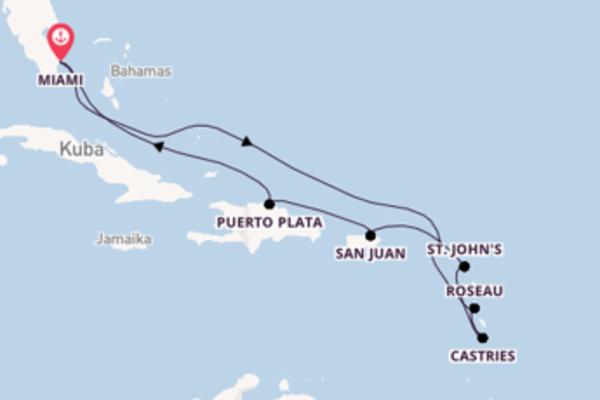 In 11 Tagen nach Miami über St. John's