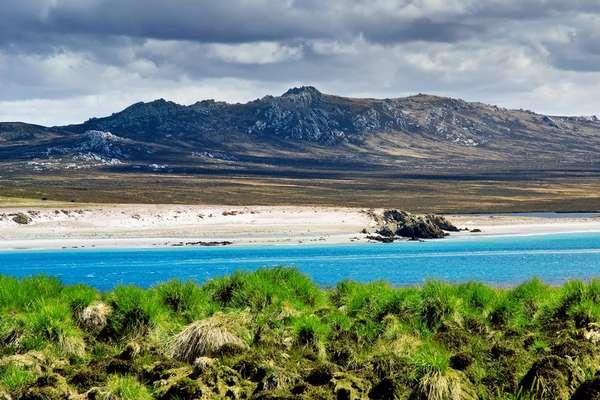 Jason Island, Falkland Islands
