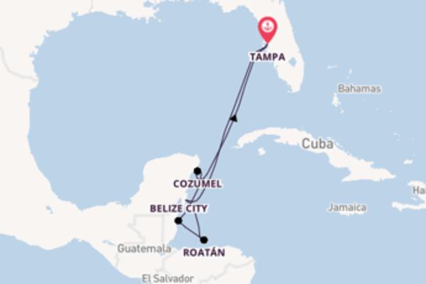 Cruise naar Tampa via Roatán
