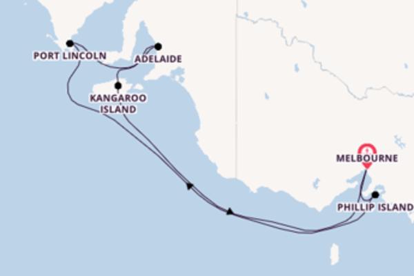 Verken het spectaculaire Phillip Island