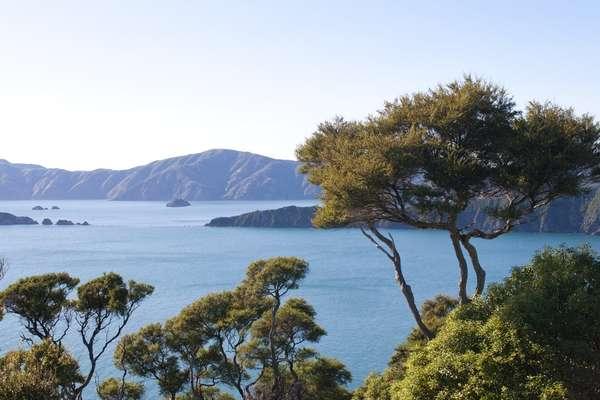 Queen Charlotte Sound, Neuseeland