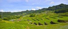 Reise nach Japan und Südkorea