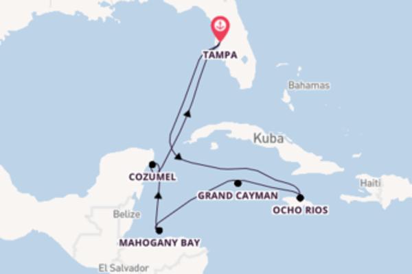 Einzigartige Kreuzfahrt über Mahogany Bay nach Tampa