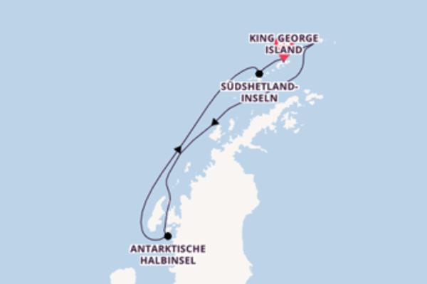 Erkunden Sie Antarctic Sound auf der Silver Explorer