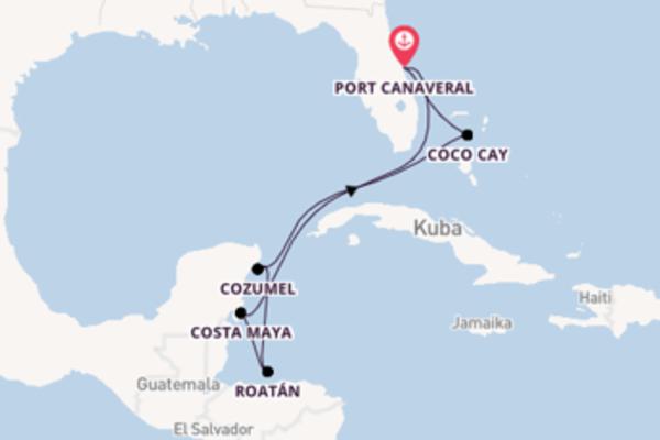 Von Port Canaveral über Costa Maya in 8 Tagen
