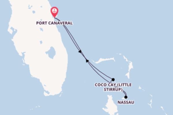 Fabulosa viagem até Port Canaveral