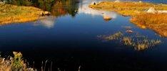 Faszination Amazonas und Atlantik