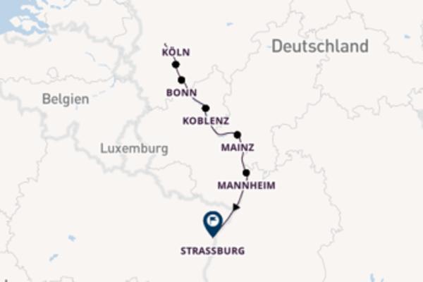 Beeindruckende Kreuzfahrt von Düsseldorf nach Straßburg