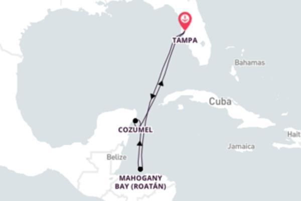 Conheça o Caribe partindo da Flórida