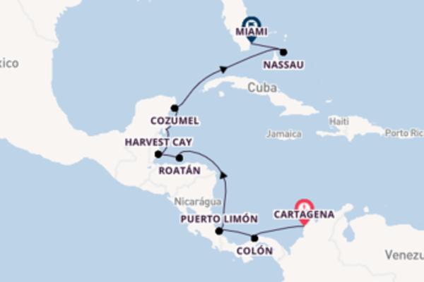 Cruzeiro de 12 dias com o Seven Seas Navigator