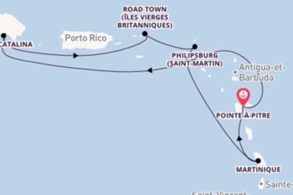 Admirez à bord du bateau Costa Fortuna, la destination: Île de Catalina