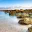 Croisière découverte des Bahamas