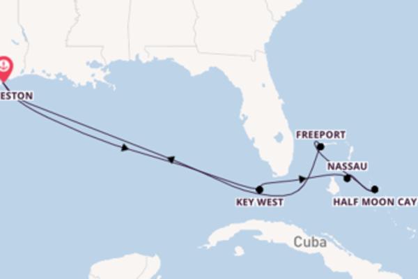 Navegando por 9 dias a bordo do Carnival Dream