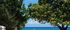 Sonnige Reise durch die Karibik