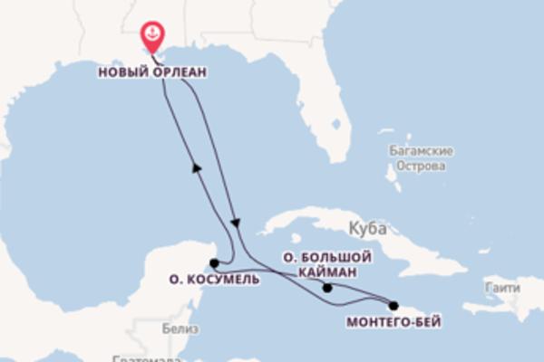 Карибы из Нового Орлеана