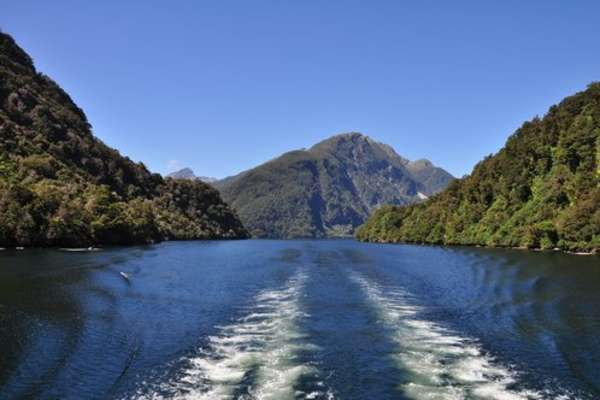 Даски Саунд, Новая Зеландия
