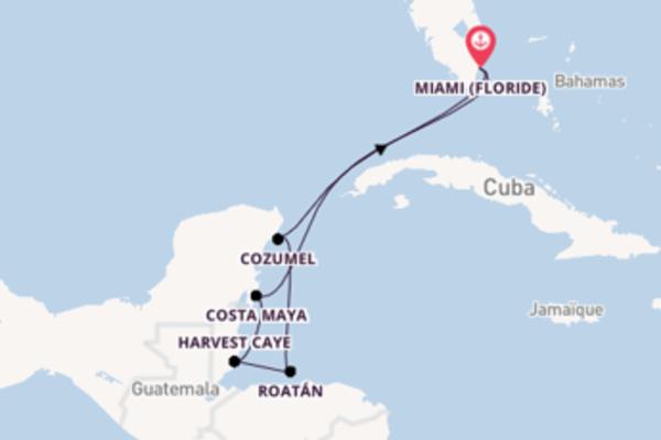 Visitez à bord du bateau Riviera, la destination: Harvest Caye