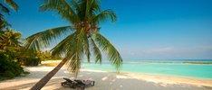 Vier Tage Bahamas