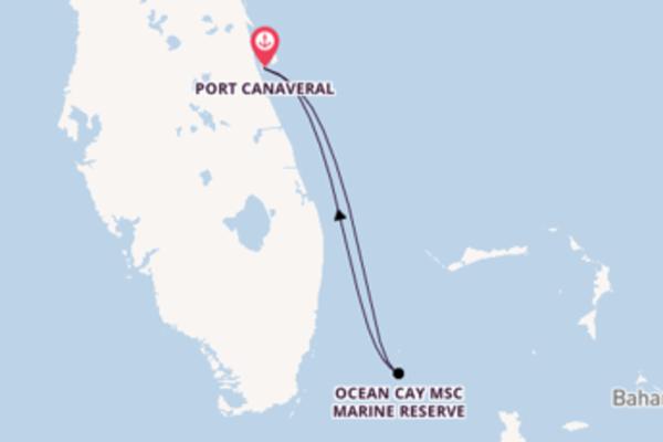 Erkunden Sie 3 Tage Ocean Cay MSC Marine Reserve und Port Canaveral