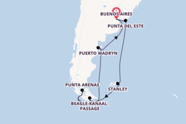 Cruise naar Buenos Aires via Stanley