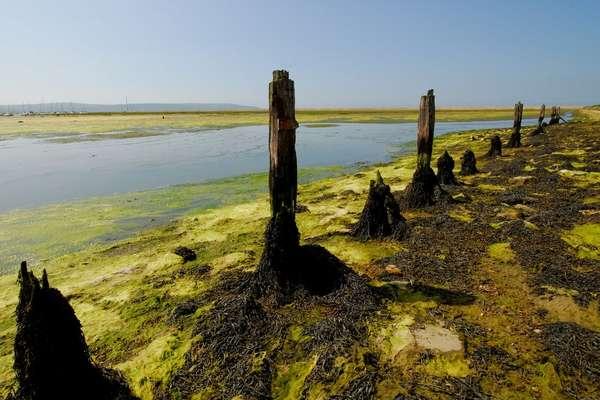 Contemplez avec Silversea, la destination: Waterford