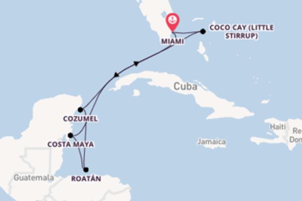 A bordo do Symphony of the Seas em um cruzeiro de 8 dias