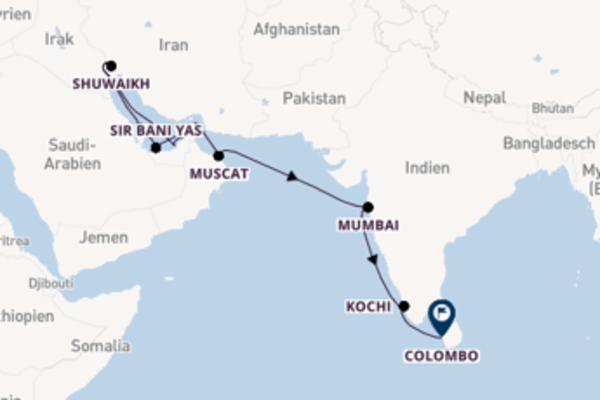 Vom Persischen Golf nach Sri Lanka