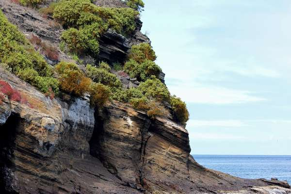 Enticing Galapagos Islands Discovery with Celebrity Cruises