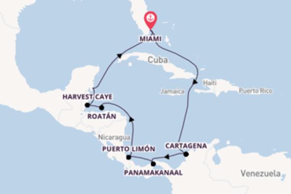 Ga mee op de Norwegian Pearl naar Miami