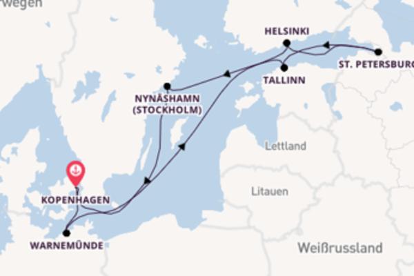 Atemberaubende Kreuzfahrt über Nynäshamn nach Kopenhagen