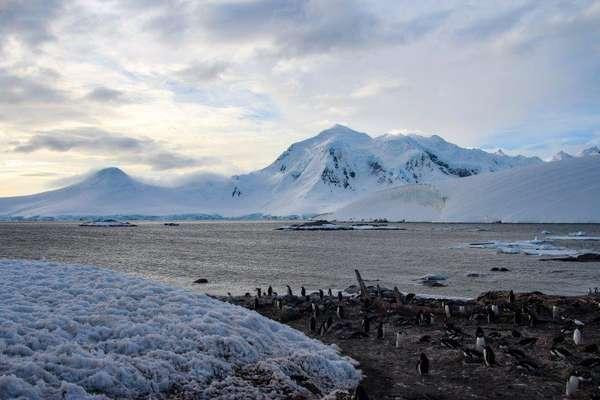 Port Lockroy, Antarctique