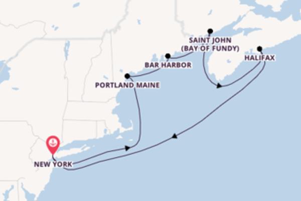 Cruise met Norwegian Cruise Line naar het mooie New York
