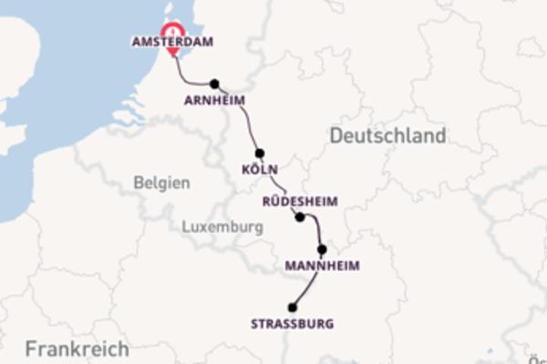 """Rheinkreuzfahrt von """"Amsterdam nach Mainz"""""""