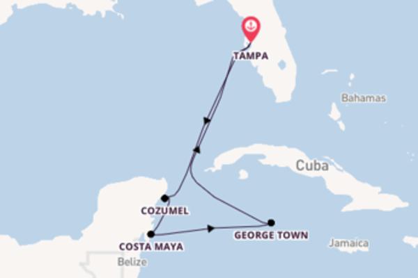 Estasiante viaggio di 8 giorni verso Tampa