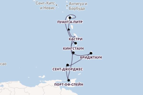 Изысканное путешествие на MSC Seaview