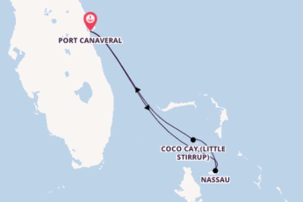 Relaxe a bordo do Mariner of the Seas em 6 dias