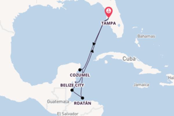 Cruise met Royal Caribbean naar het sprankelende Tampa