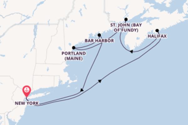 8 Tage Nordamerika Kreuzfahrt