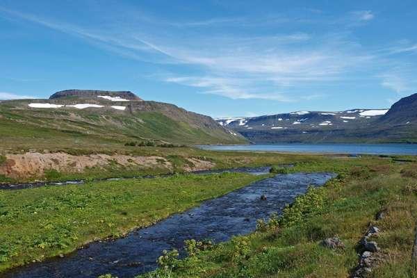 Hornstrandir, IJsland