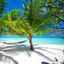 Abstecher auf die Neukaledonien