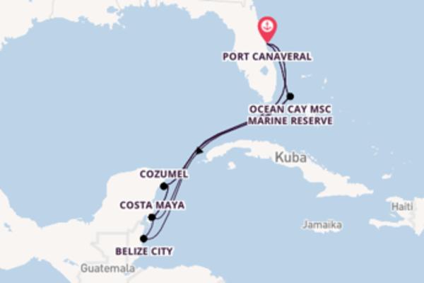 Einzigartige Kreuzfahrt mit der MSC Meraviglia