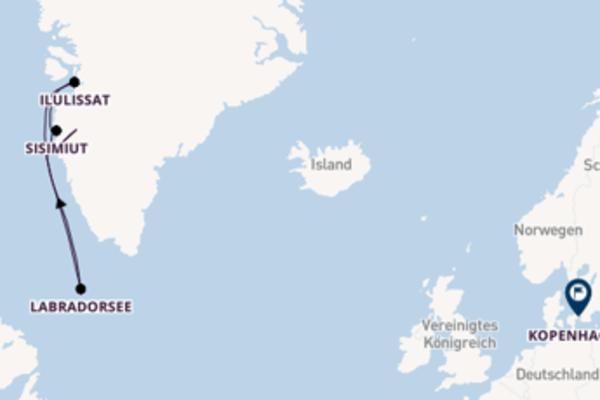Wunderschöne Kreuzfahrt von Kangerlussuaq, Grönland nach Kopenhagen, Dänemark