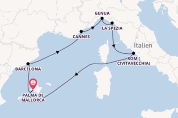 In 8 Tagen nach Palma de Mallorca