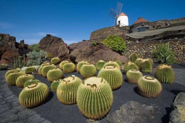 8-daagse cruise naar Santa Cruz de Tenerife