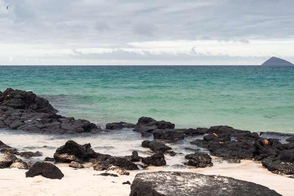 Cormorant Point (Florena), Galapagos Eilanden
