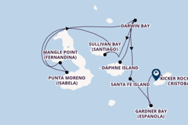 Voyage with the Silver Origin to Kicker Rock (San Cristobal) from Baltra